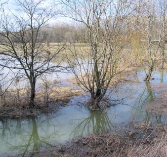 Záplavy, 2006