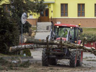 Kácení dřevin v zatáčce u obecního úřadu