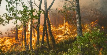 Dobrovolní hasiči významně přispívají k bezpečnosti ve Zlínském kraji