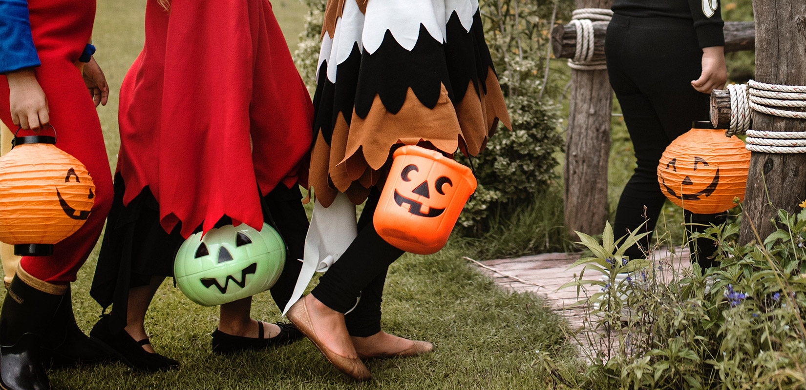 Halloween v ZOO